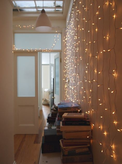 Fairy Light Netting